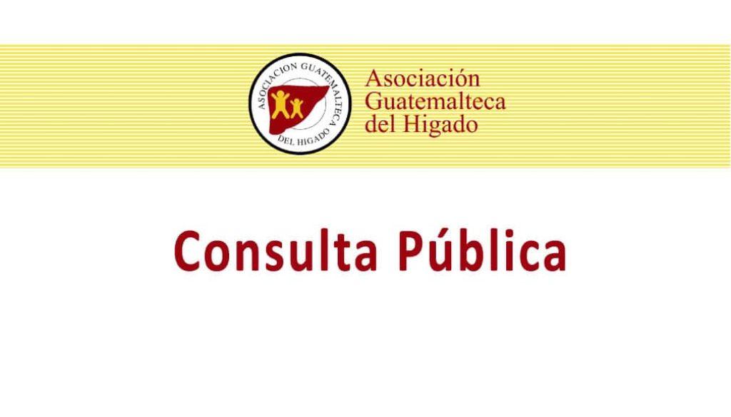 consultapublica2