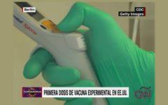 vacuna_bcg_covid